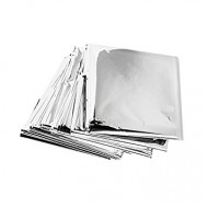 Plastic Silver Pouch 6x8 (Pack of 70)